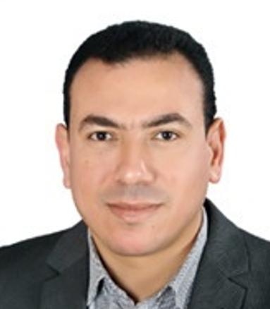 A. Professor Mohammed Shihab, Tanta University Photo